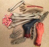Human Bones & Body Parts